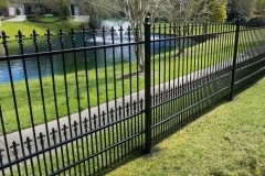 fence painting 2